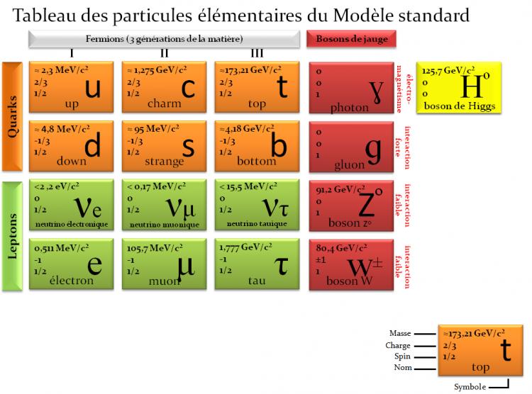 modele_standard